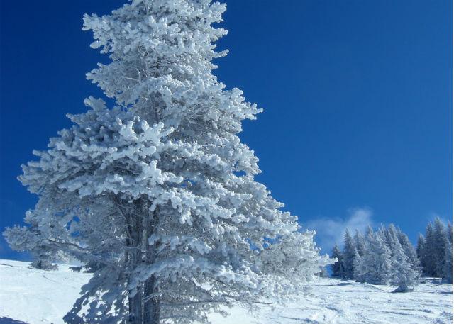 skijalište na goču